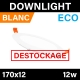 DOWNLIGHT - ECO - BLANC - 12W